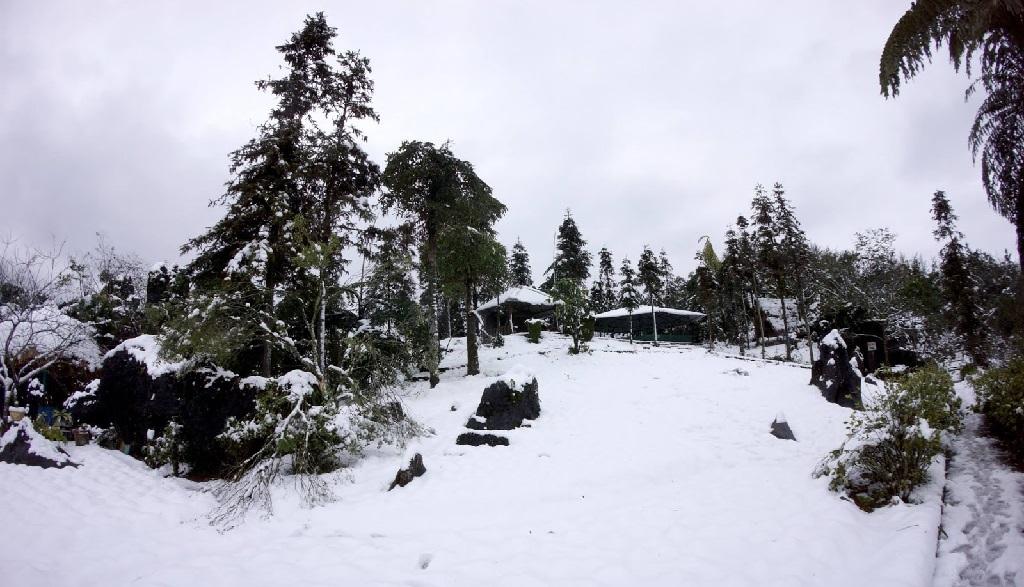 Bản Cát Cát săn tuyết sapa