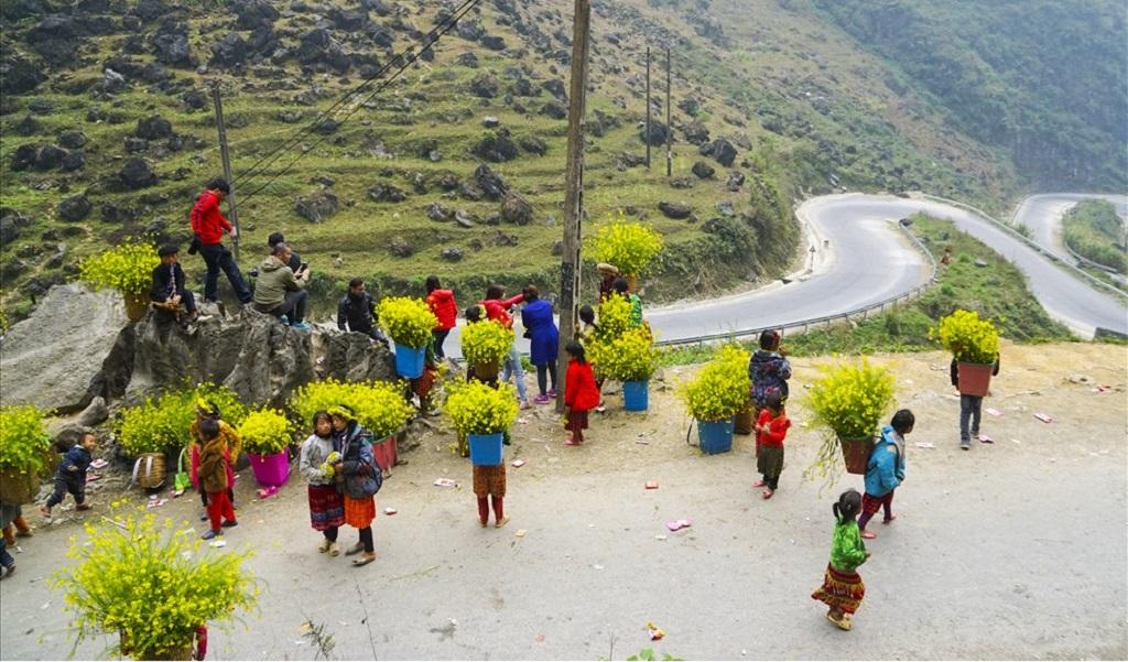 Tết dương lịch 2021 lên Hà Giang ngắm hoa
