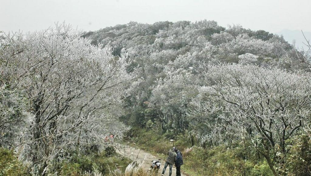 săn tuyết Phia Oắc