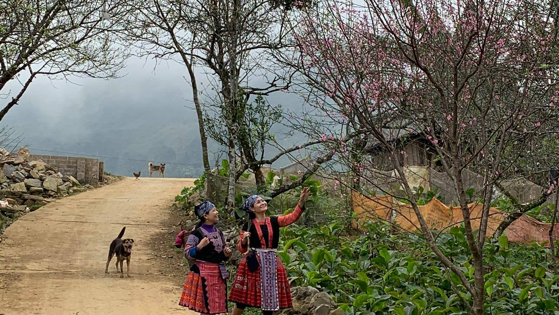 Tết cổ truyền của người Mông tại Pà Cò - Hang Kia
