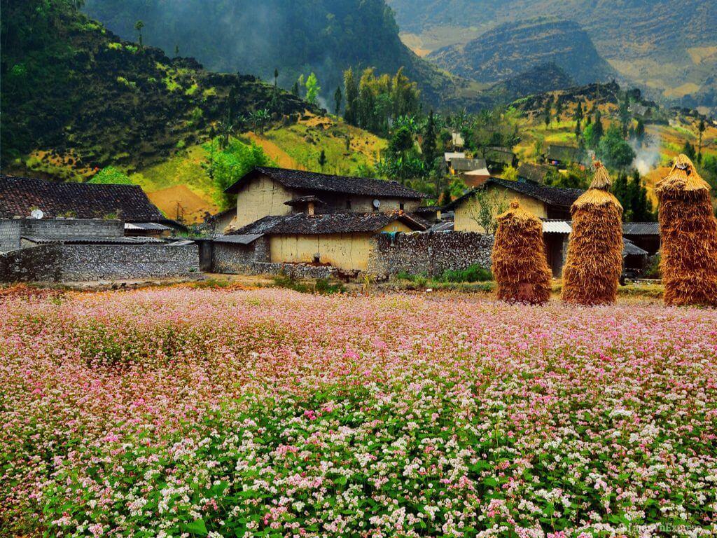 Làng văn hóa Lũng Cẩm