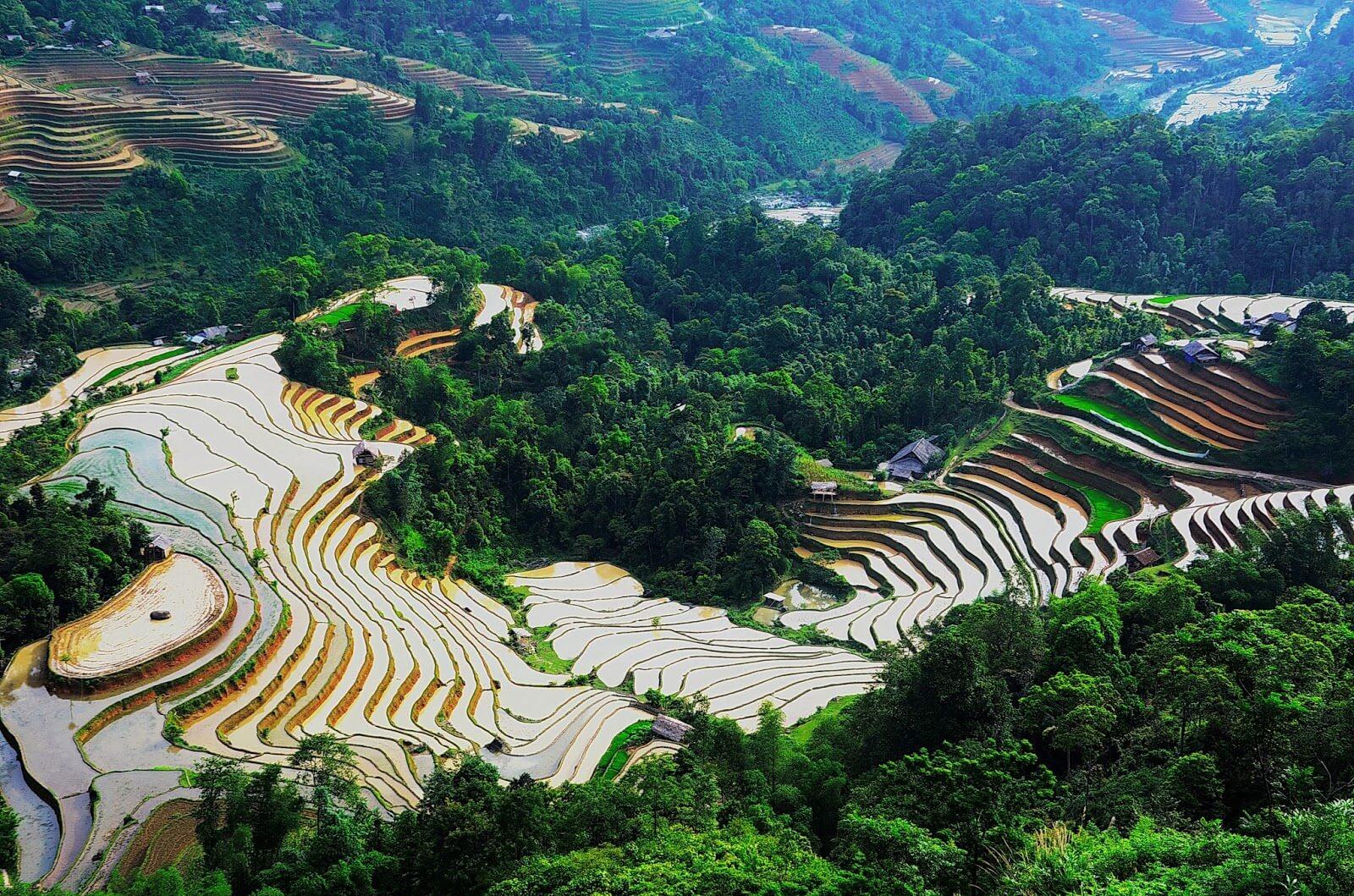 Trải nghiệm điểm du lịch Hà Giang - Ruộng bậc thang mua nước đổ Hoàng Su Phì
