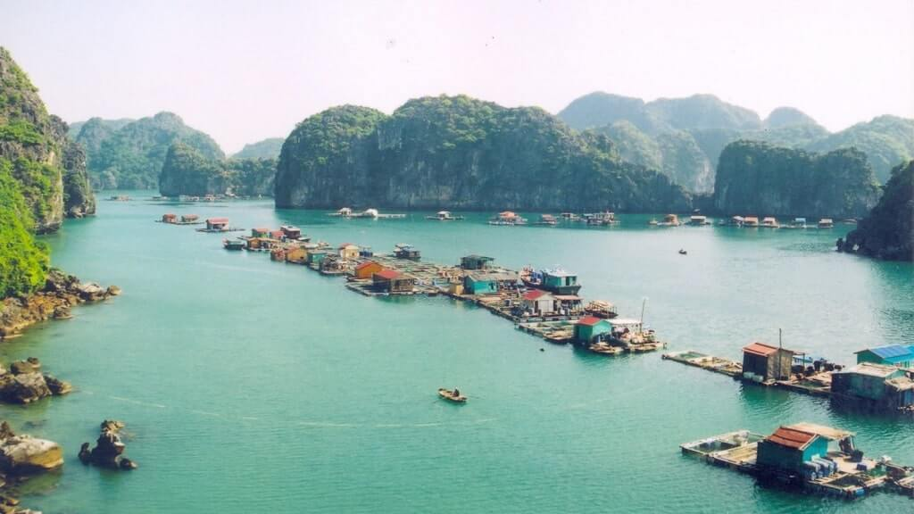 Chợ nổi vịnh Lan Hạ