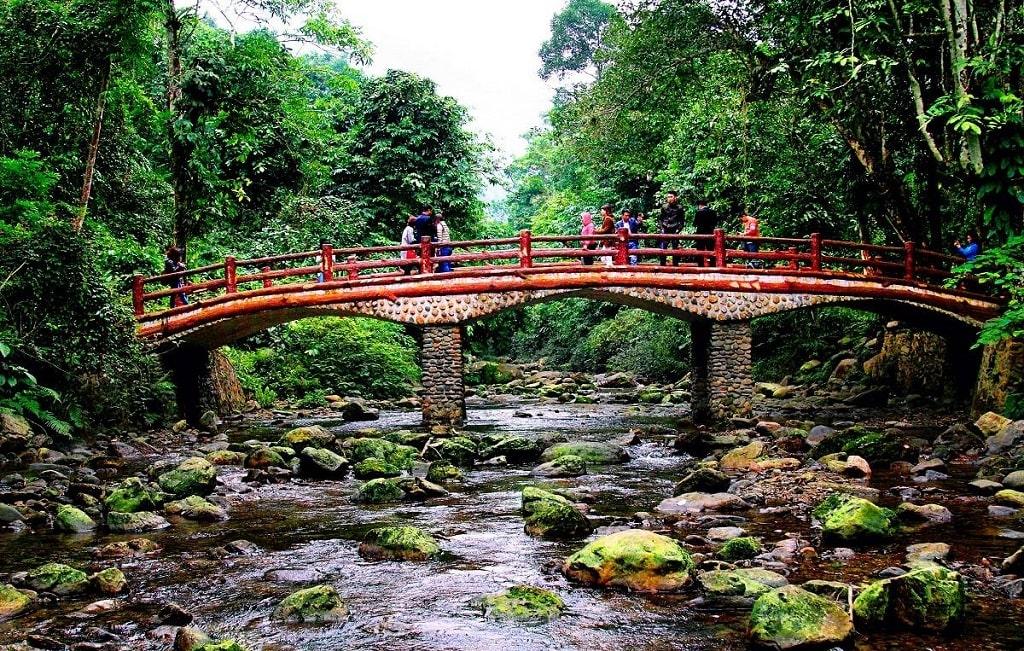 Ghé thăm vườn quốc gia Xuân Sơn