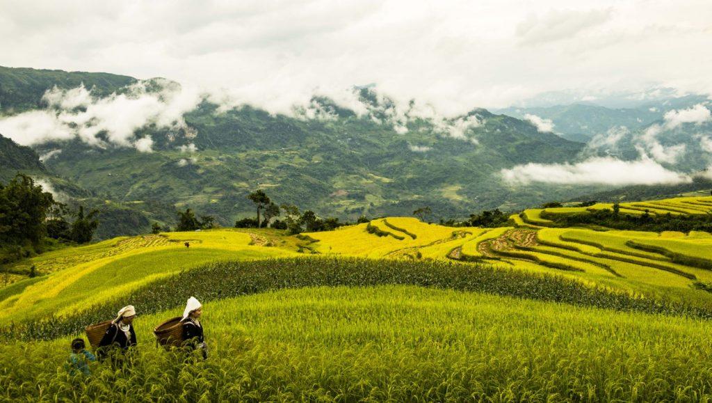 Hồng Thái - địa điểm du lịch mới