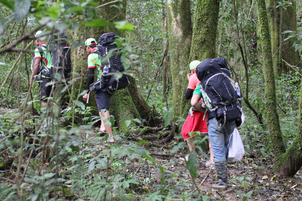 trekking-langbiang